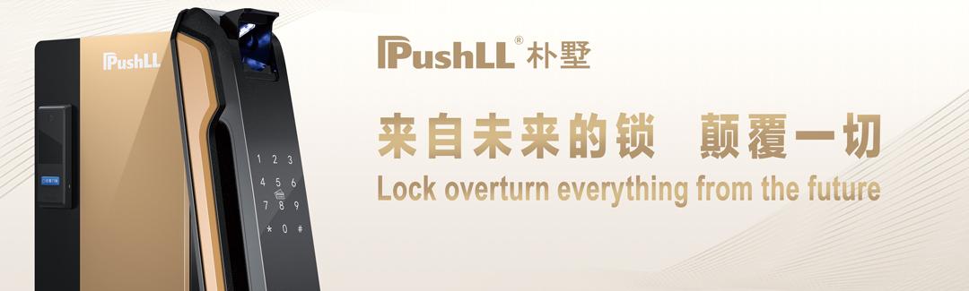 来自未来的锁,颠覆一切